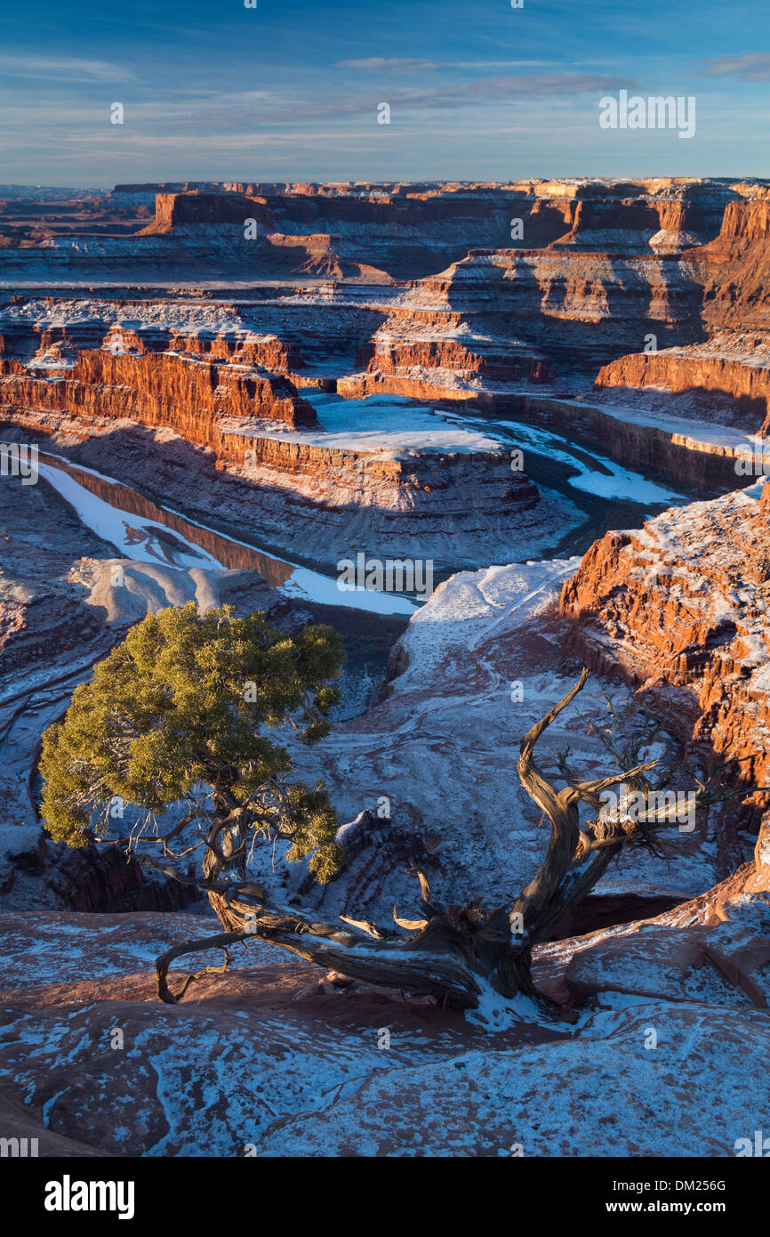 the Colorado Valley from Dead Horse Point at dawn, Utah, USA - Stock Image