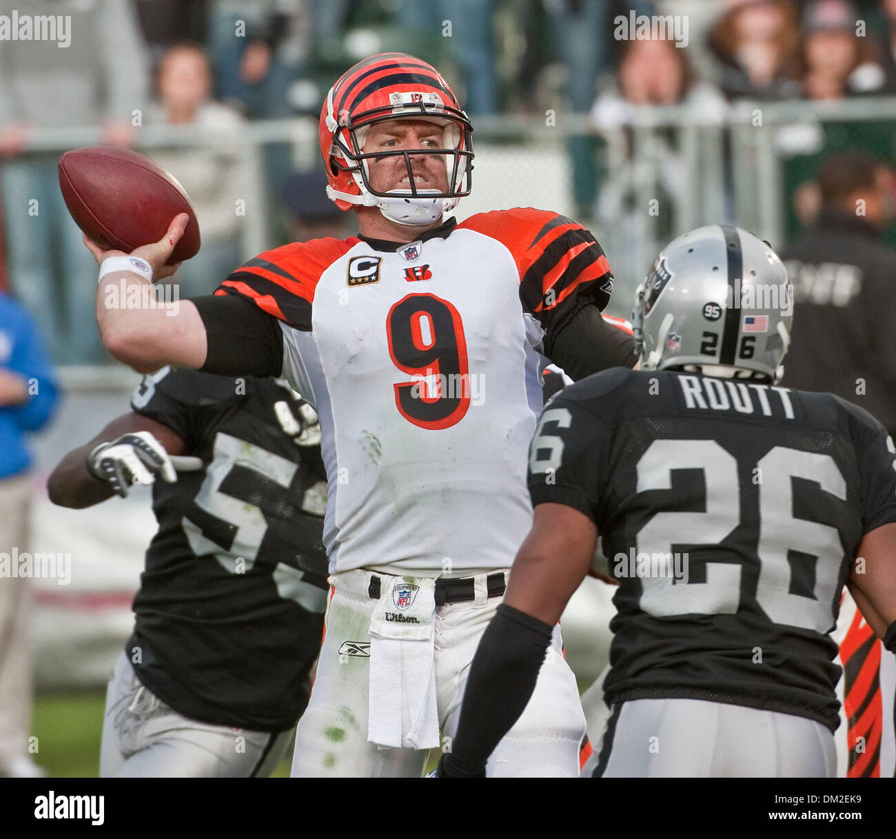 San Diego Chargers Cincinnati Bengals: Carson Palmer Stock Photos & Carson Palmer Stock Images
