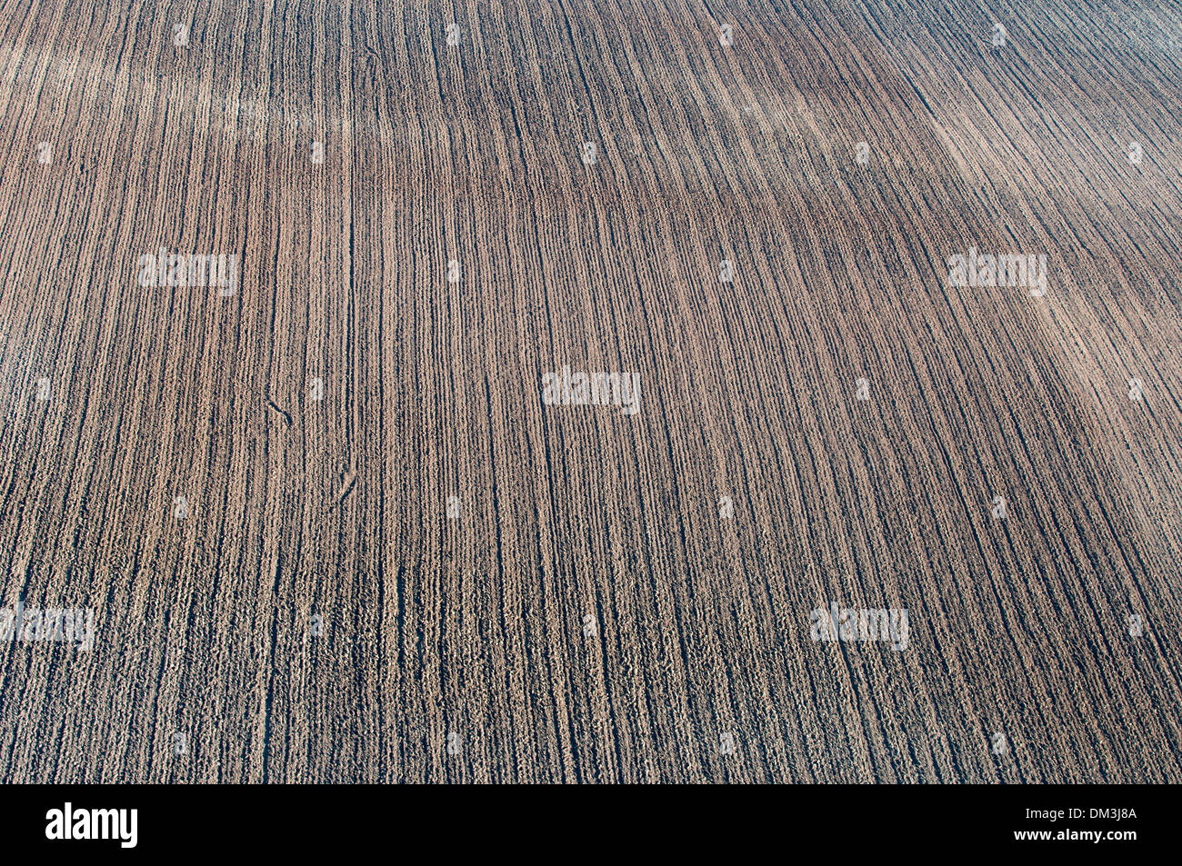 Field, field, broke, aerial, agriculture, trees - Stock Image