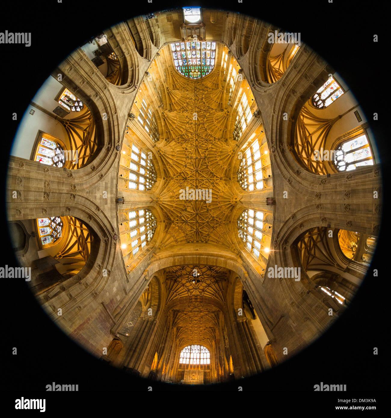 Sherborne Abbey ceiling, Sherborne, Dorset, England UK - Stock Image