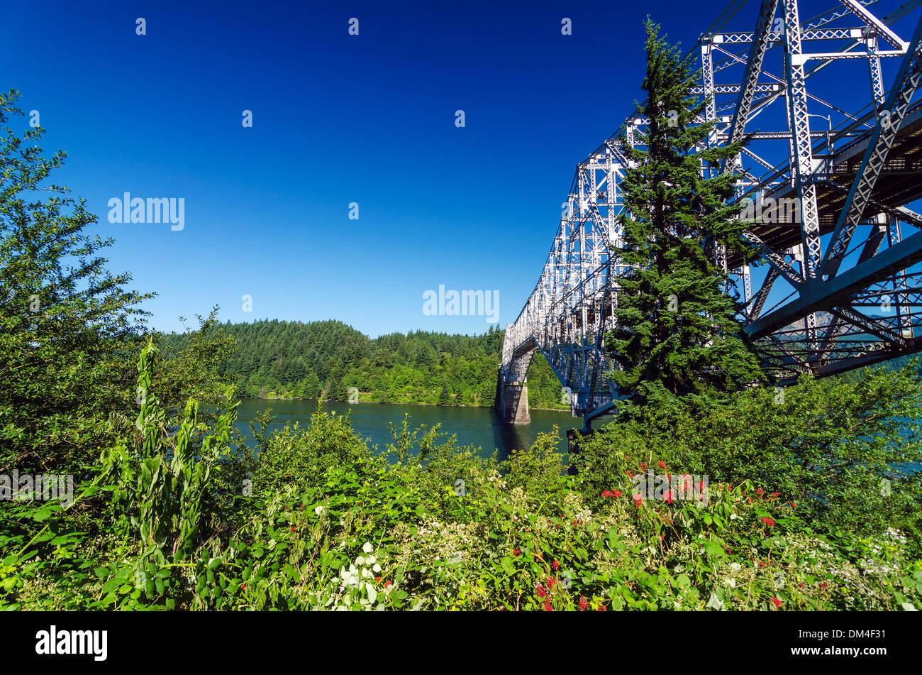 Vegetation surrounding the Bridge of the Gods connecting Oregon to Washington - Stock Image