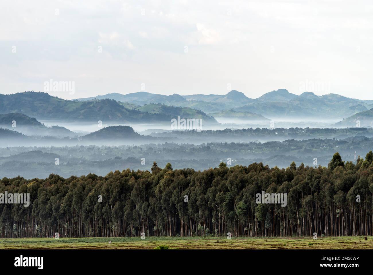 Landscapes Volcanoes National Park Rwanda Africa - Stock Image
