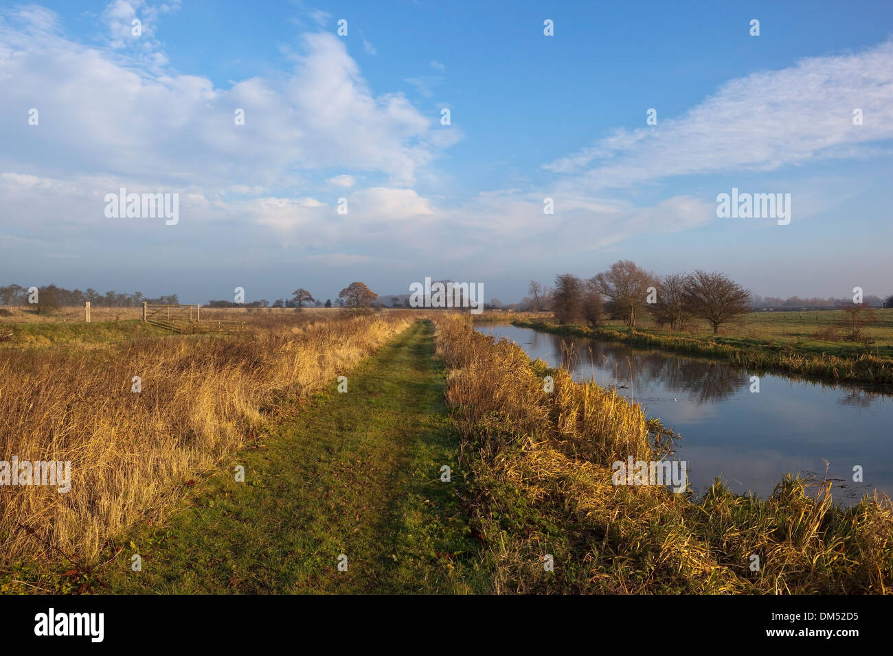 A scenic canal towpath in winter with dry grasses, water and hedgerows under a blue cloudy sky - Stock Image