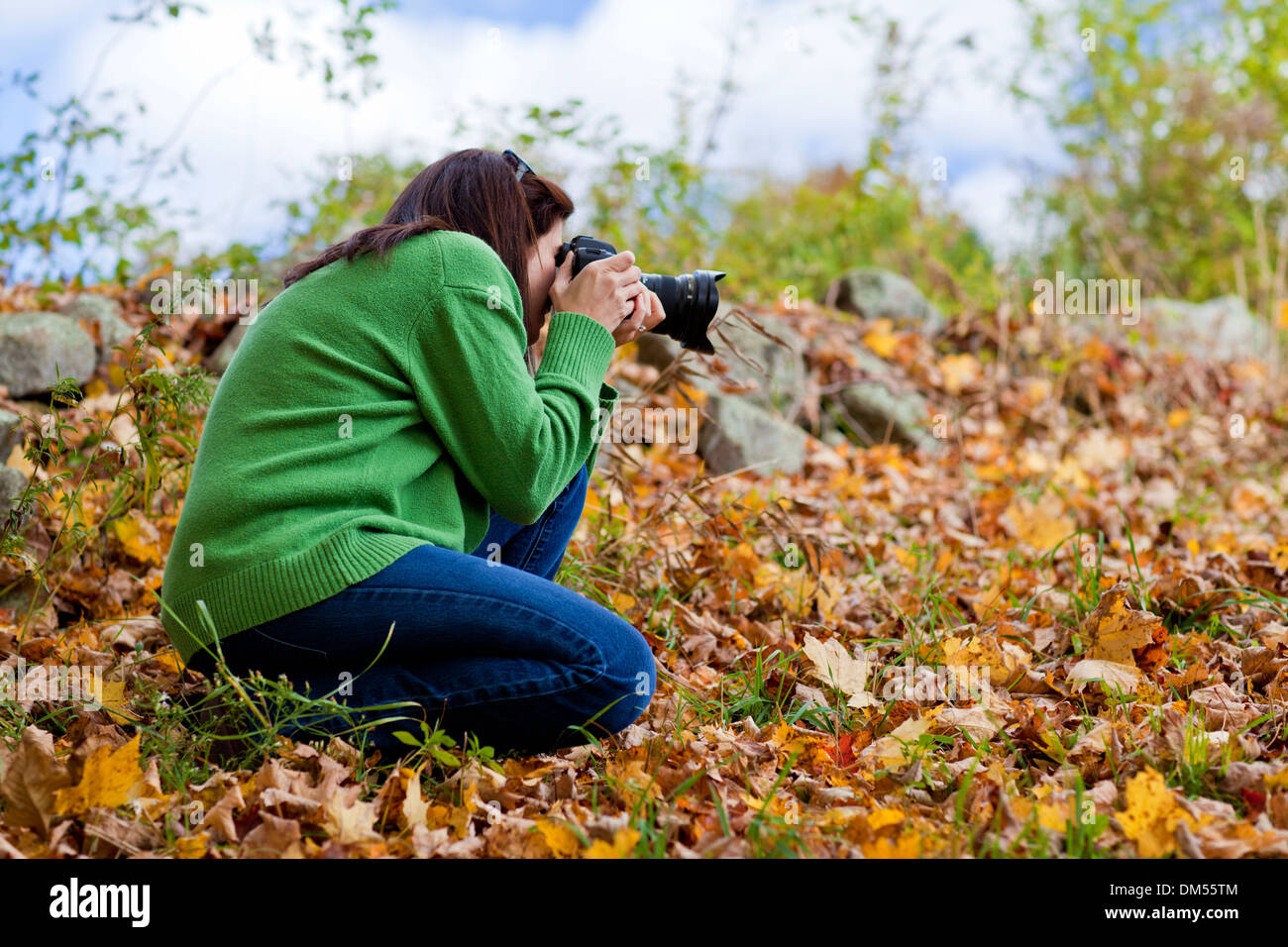 Female photographer crouching in fall leaves to take a picture  - Stock Image