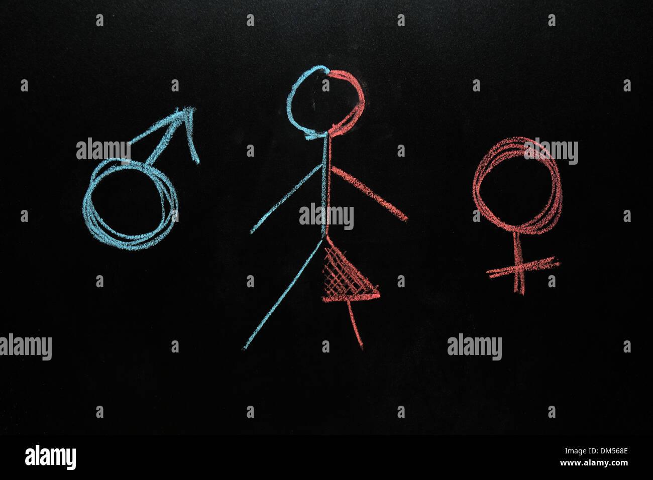 Female and male symbols with a half female half male stick figure drawn on a blackboard in chalk. - Stock Image