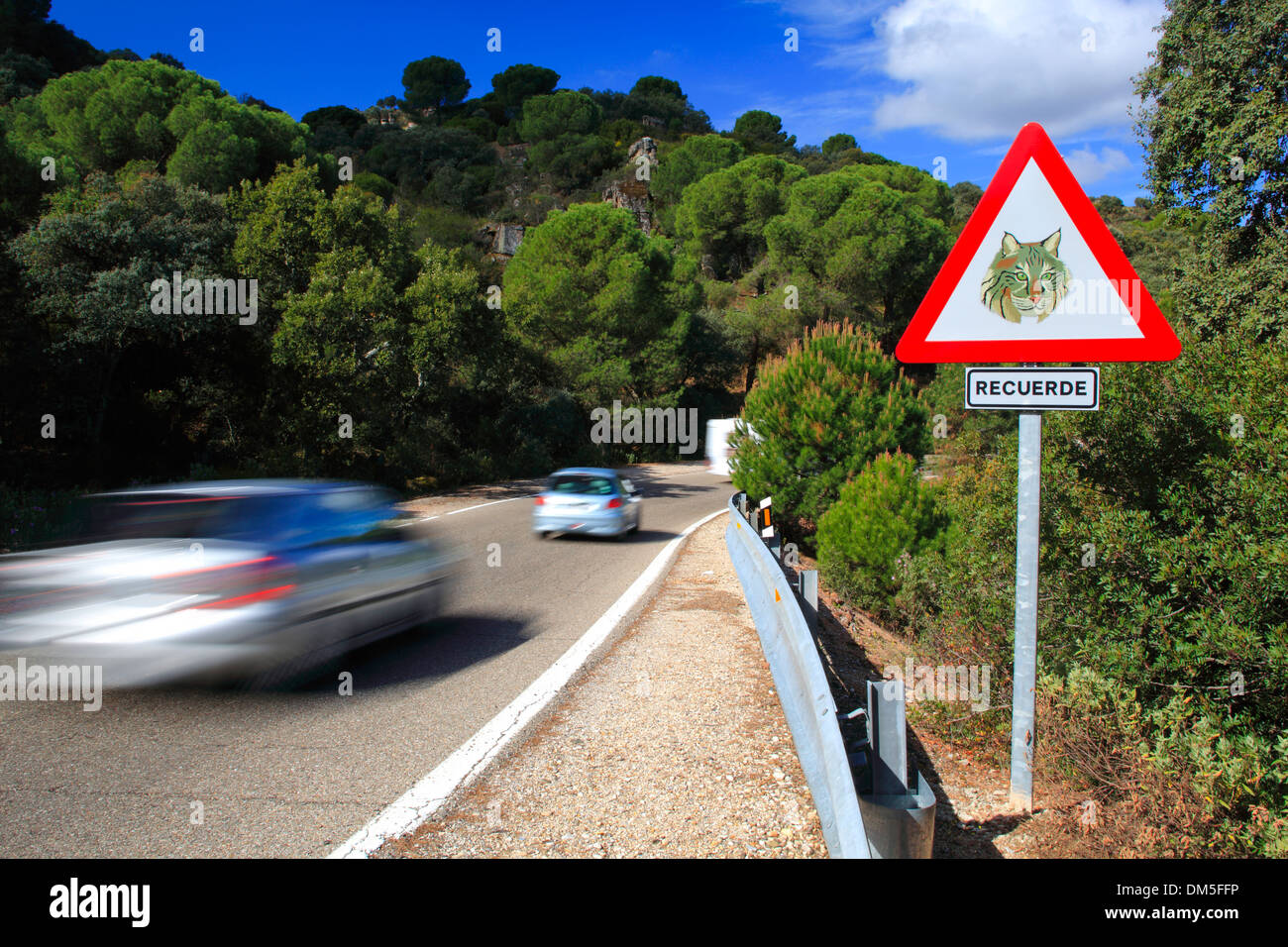 Andalusia car automobile cars automobiles visitors danger threat speed swiftness park Sierra de Anduar province Jaen protective - Stock Image