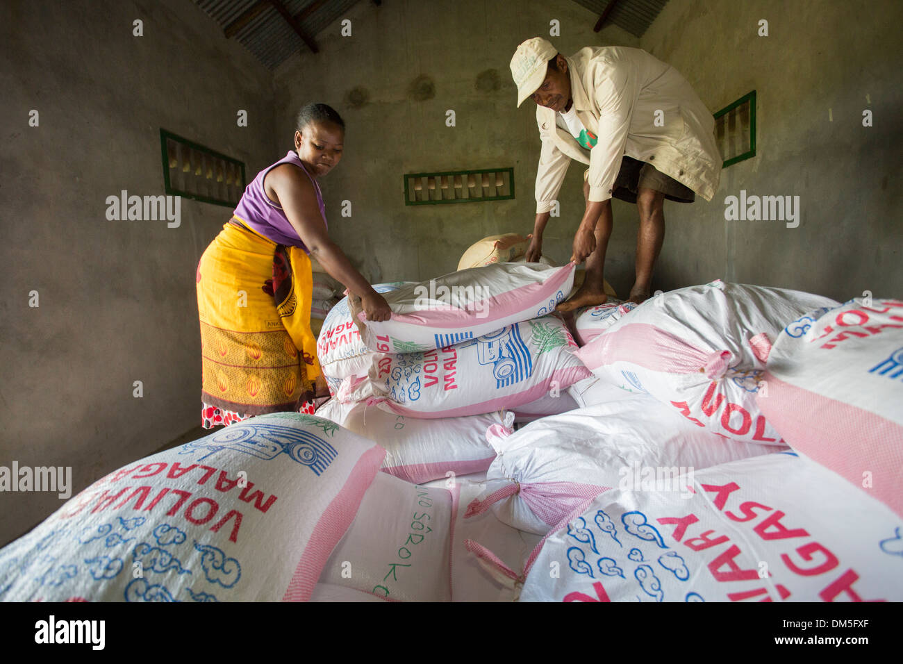 Sacks of rice are sorted in a warehouse in Fenerive Est District, Madagascar, Africa. - Stock Image