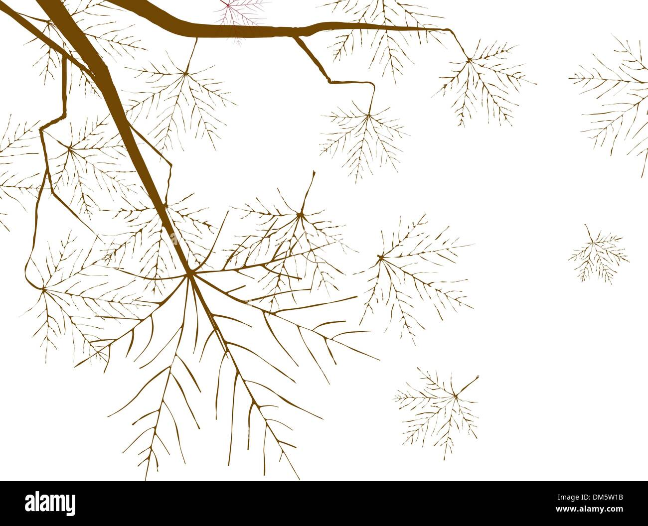 Autumn leaves background in a sunny day. - Stock Vector