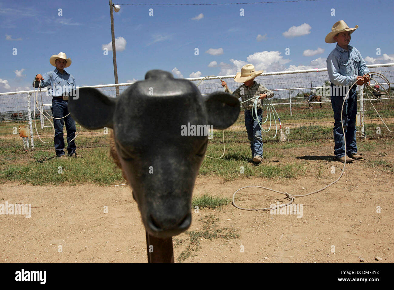 Aug 06, 2005; San Angelo, TX, USA; Clayton Turner, 14, of Henly, from left, Franklin Buchholz, 7, and Robert Buchholz, 12, both of El Dorado, practice roping at World Championship Goat Roping in San Angelo, TX, on Saturday, August 6, 2005. Turner competed in the morning's 14-and-under division. Mandatory Credit: Photo by Lisa Krantz/San Antonio Express-News/ZUMA Press. (©) Copyrigh - Stock Image