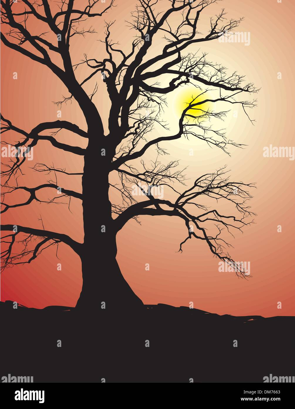 Silhouette Of An Old Tree In Sunset - Stock Vector