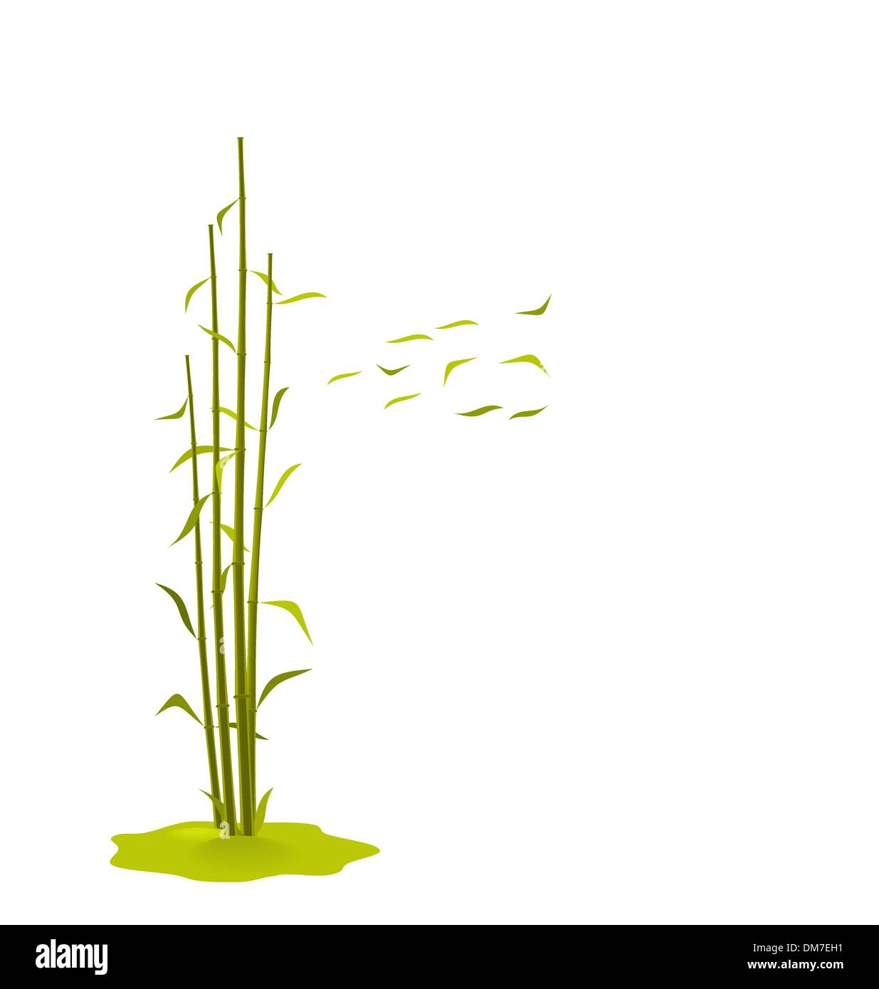 The illustration a wind breaks bamboo leaves - Stock Vector