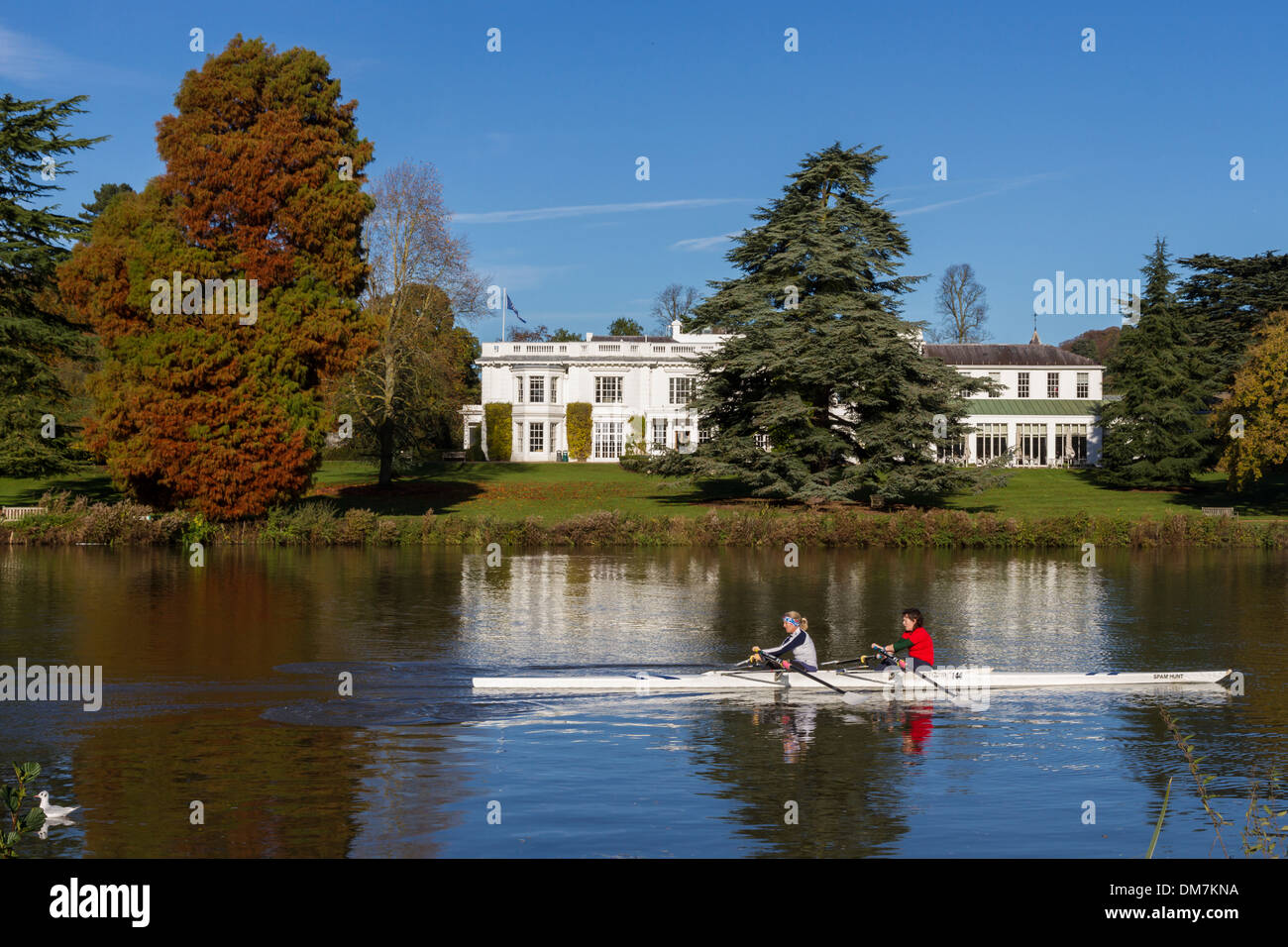 England, Buckinghamshire, autumn, rowers on river Thames, with Henley management college - Stock Image