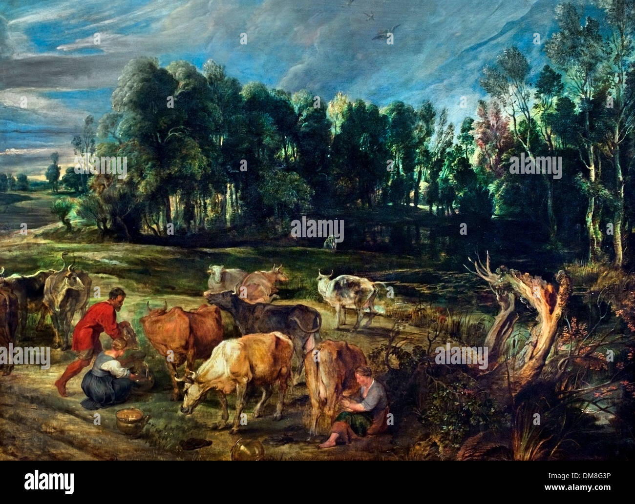 Polder landscape with a herd of cows  by Peter Paul Rubens (1577–1640) Flemish Belgian Belgium - Stock Image