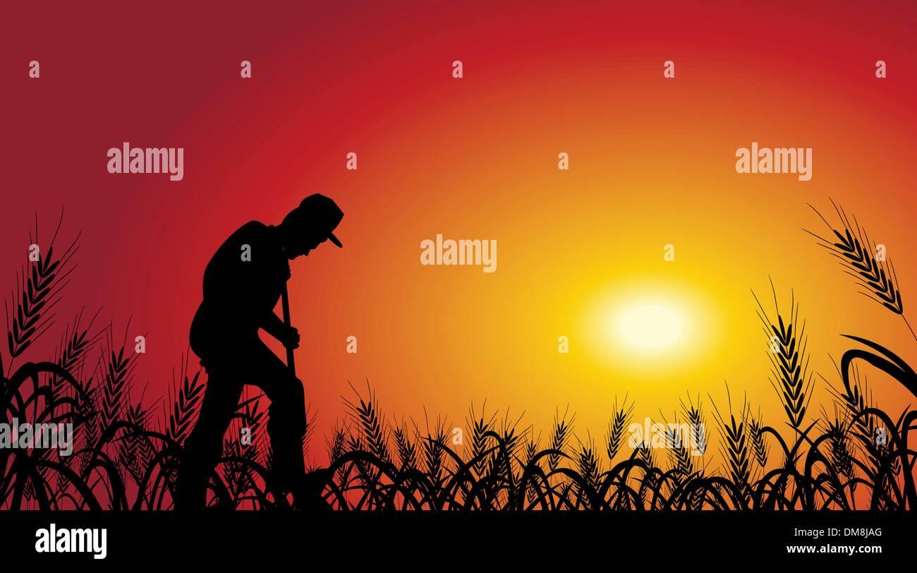 farmer in wheat field - Stock Vector