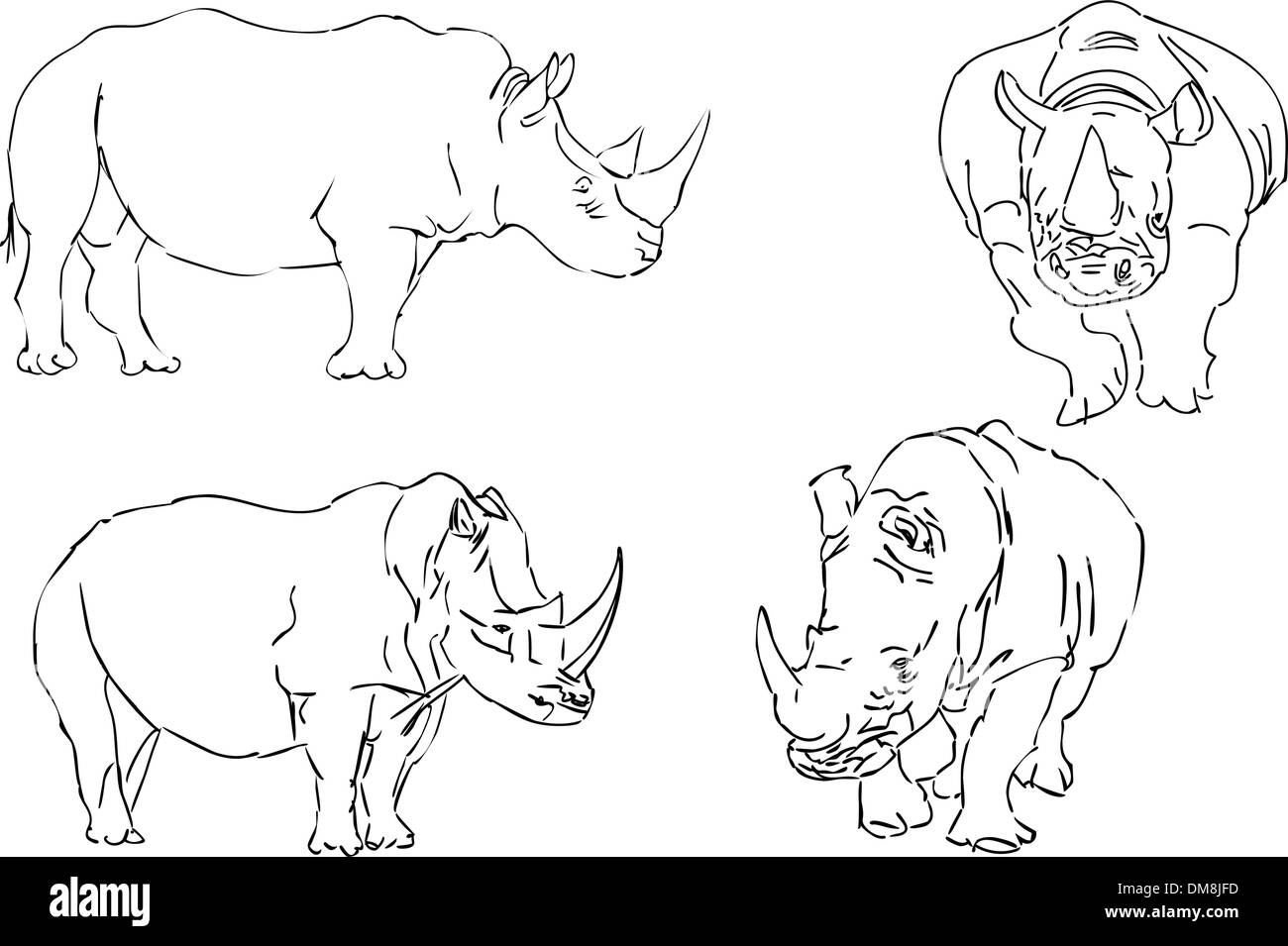 vector illustration sketch of rhino - Stock Image