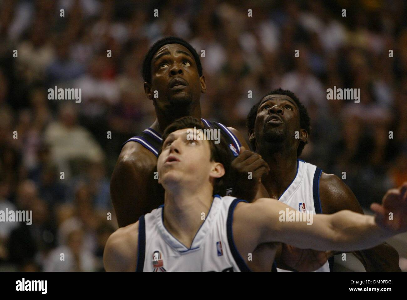 36989aabd Kings Forward Chris Webber is sandwiched by Eduardo Najera and Mich Finley  trying for a rebound