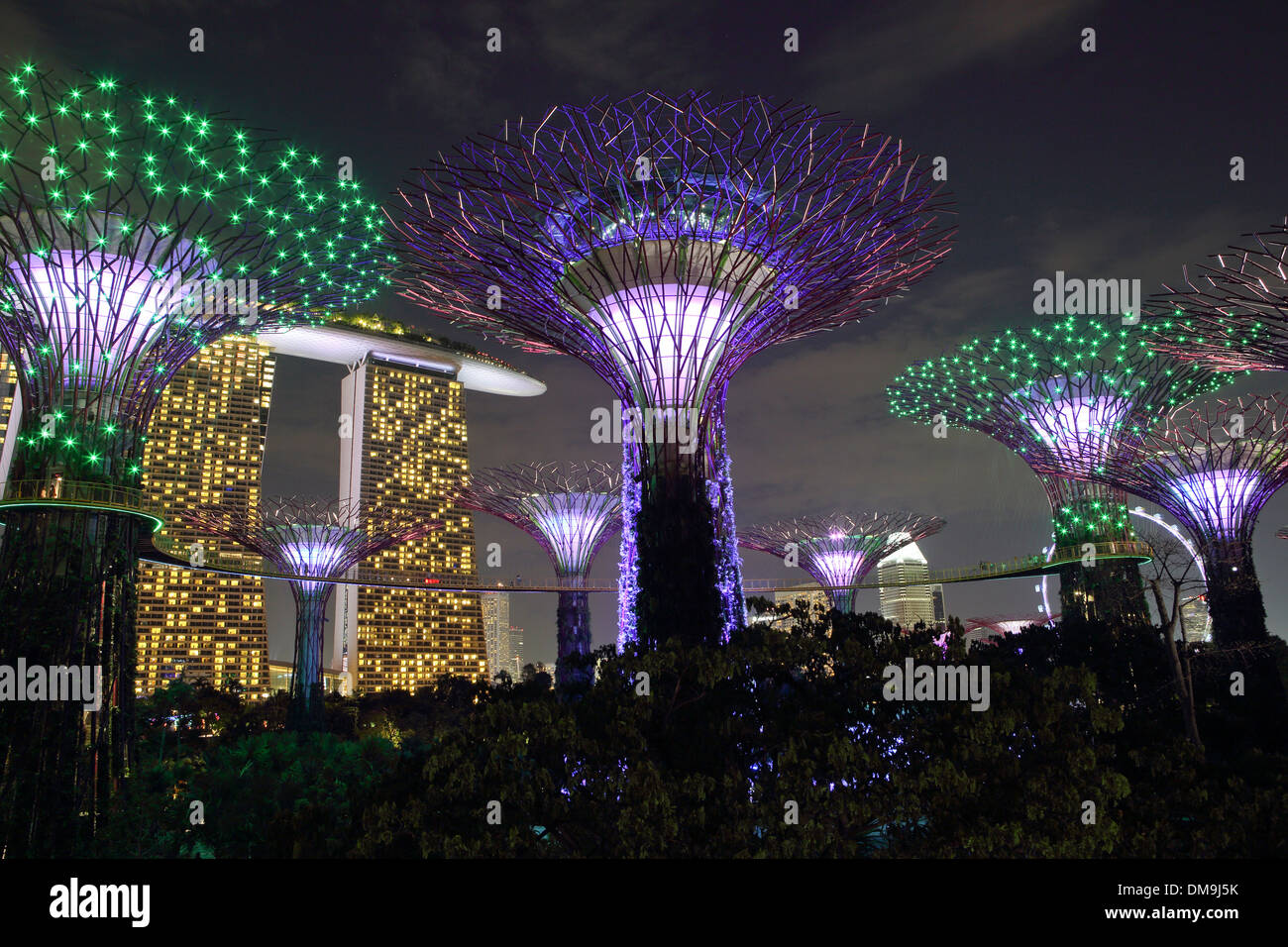 Gardens By The Bay And Supertree Grove Light Show At Night In Stock