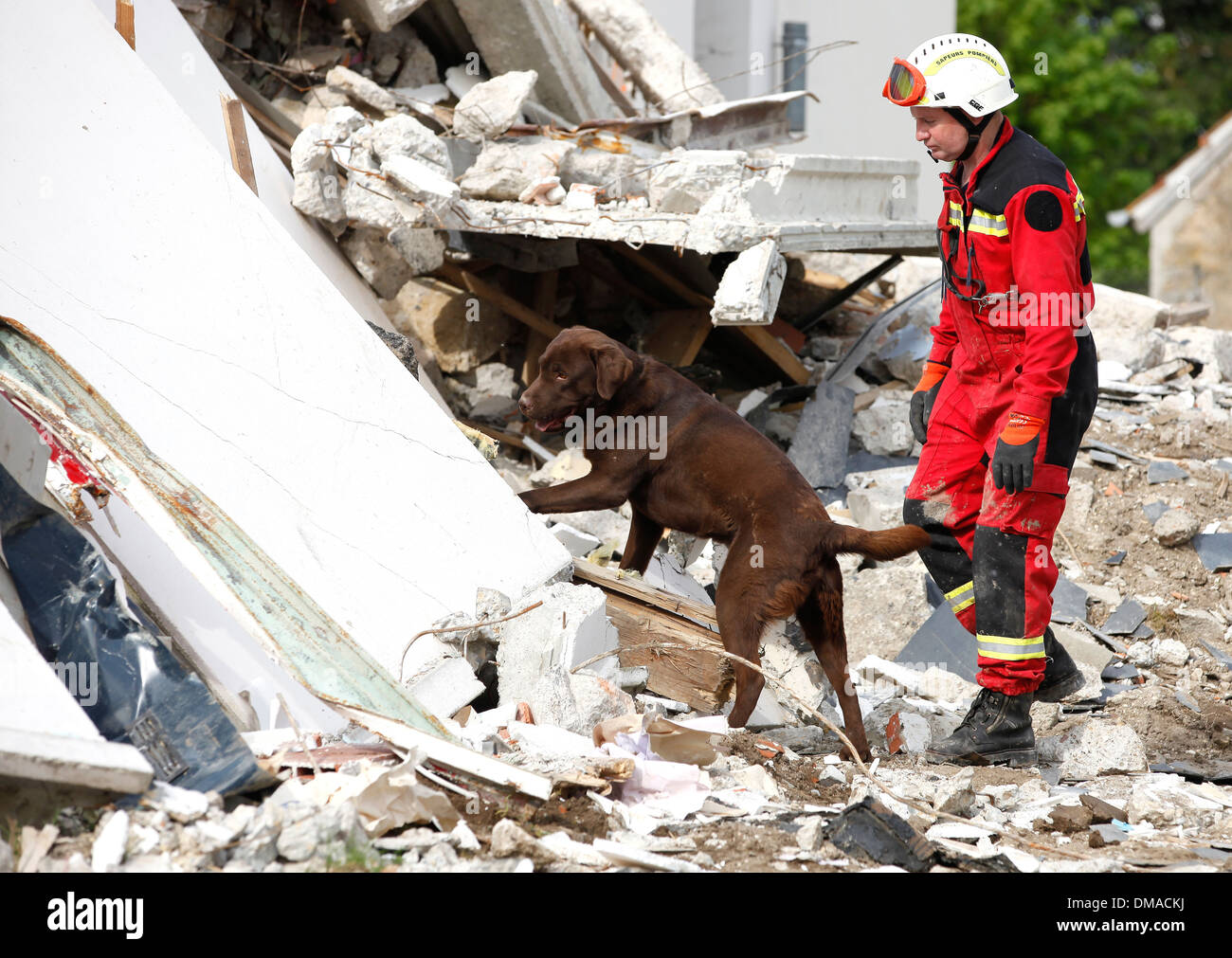 Cher: SDIS 18, dog team at the Cher departement fire and rescue service - Stock Image