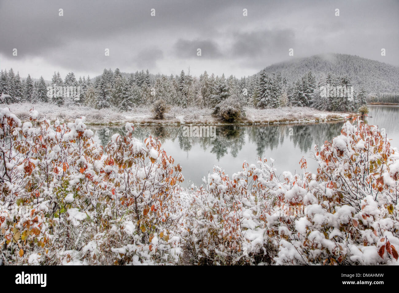 Oxbow Bend with Autumn (Fall) colour and early snow Grand Tetons National Park Wyoming. USA LA006565 - Stock Image