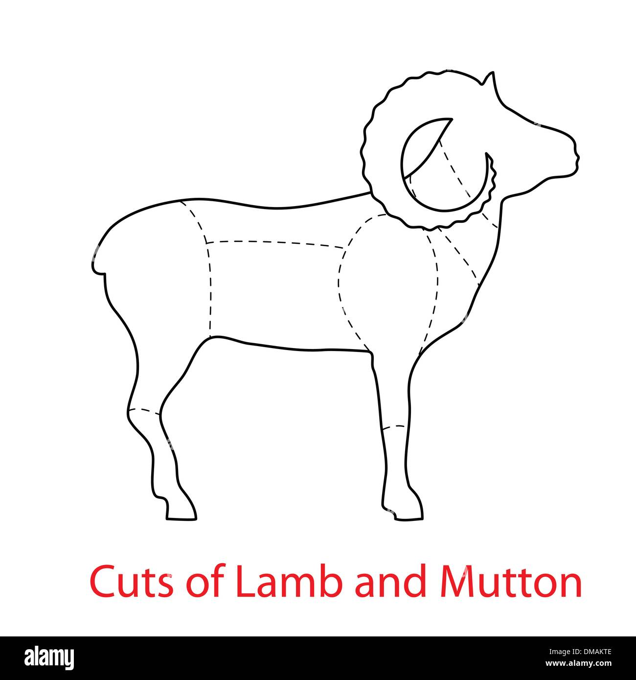 Cuts-of-Lamb-and-Mutton - Stock Image