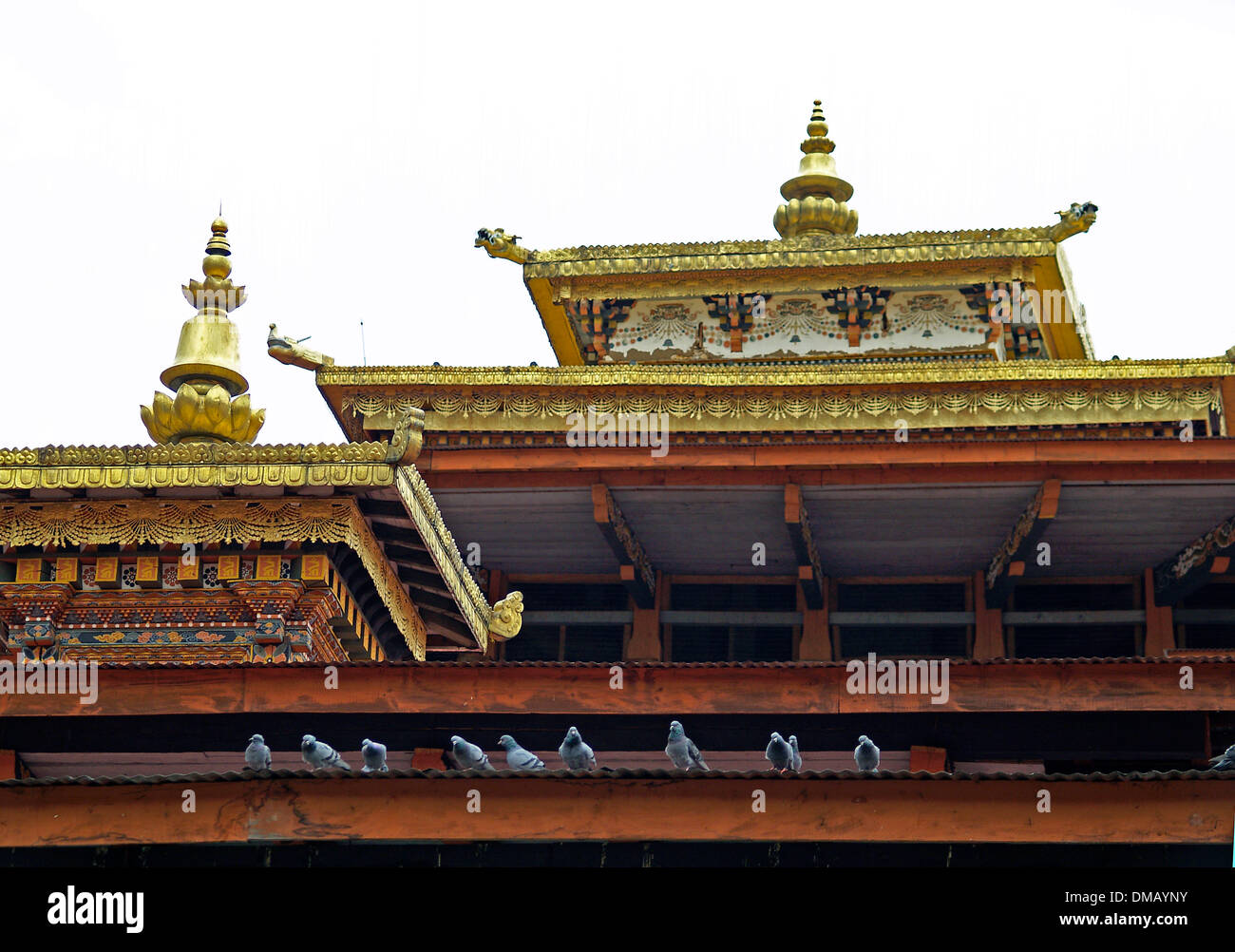 Pigeons and gilded roof lines,Punakha Dzong,Bhutan - Stock Image