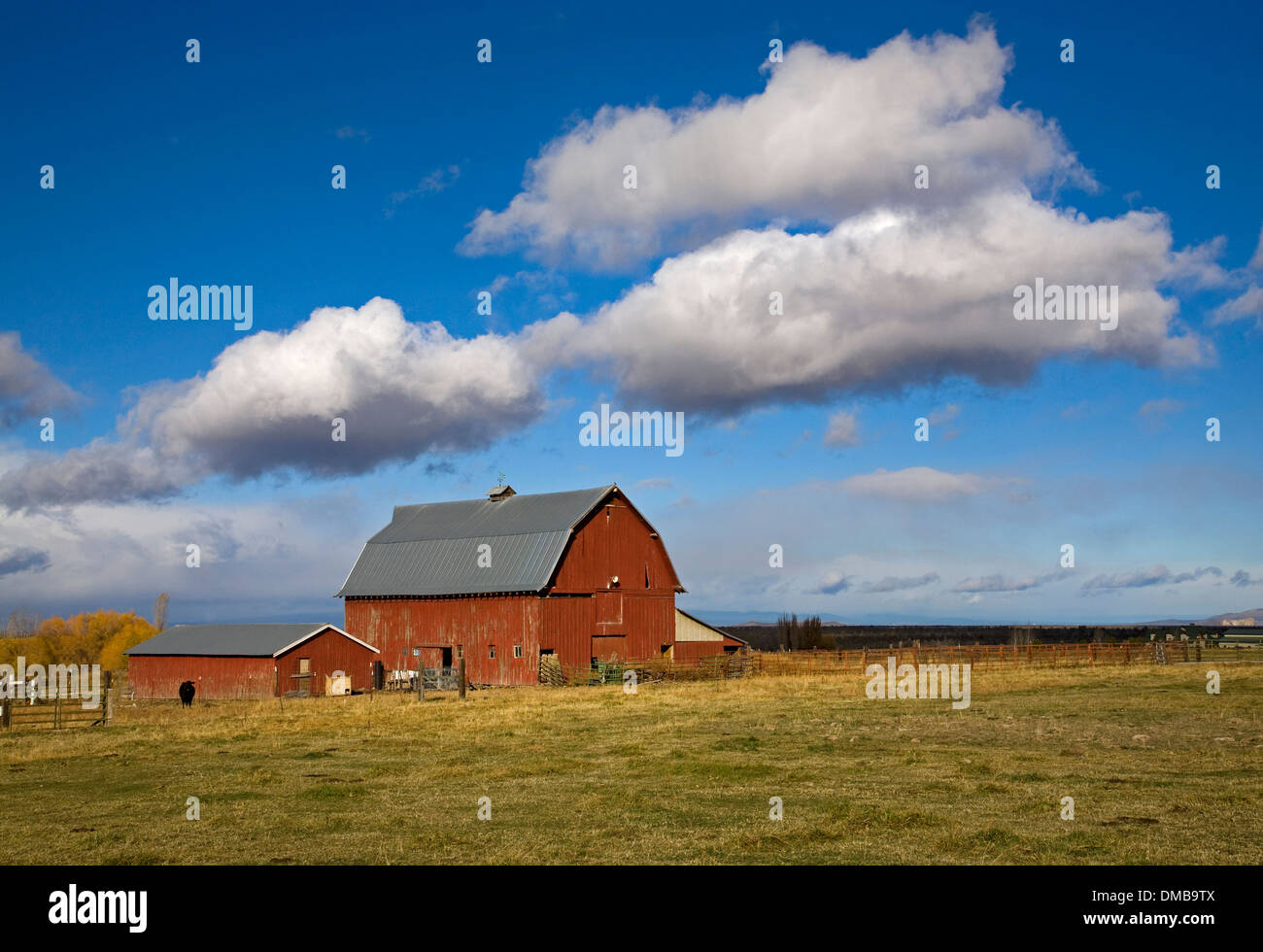 A red barn under early winter clouds near Powell Butte, oregon - Stock Image