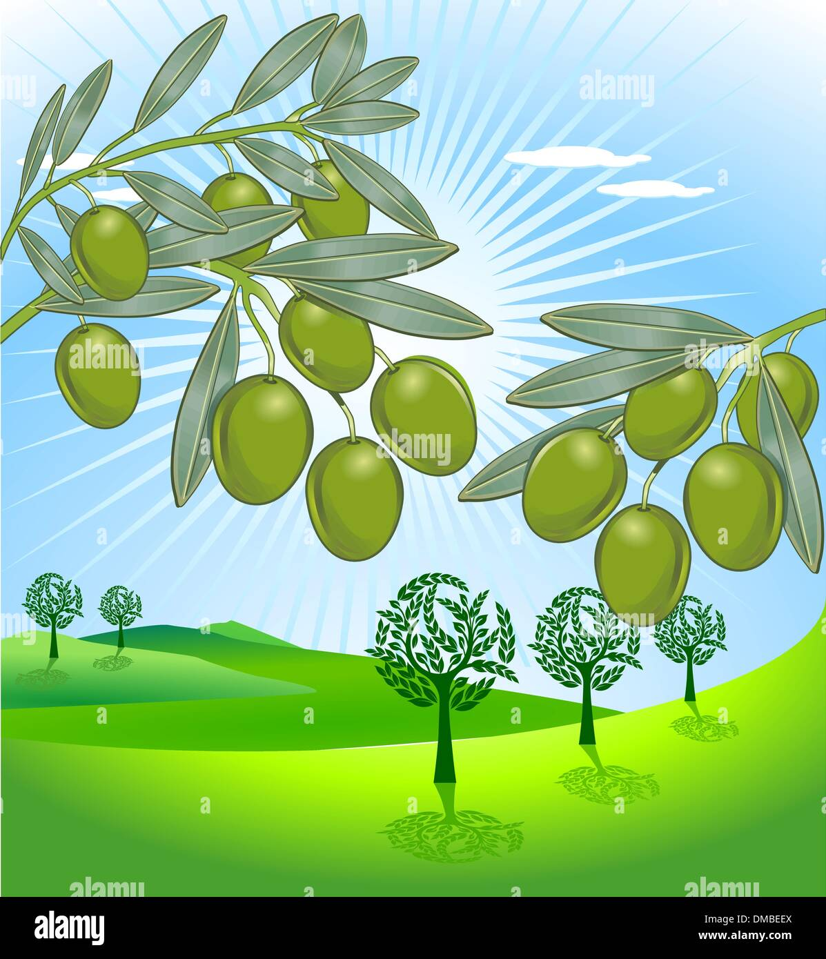 olive and freshly harvested olives - Stock Vector