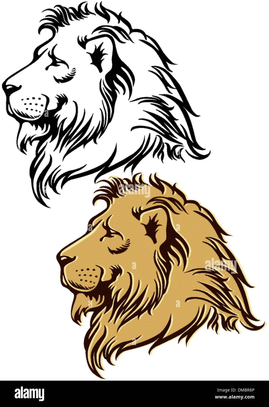 Lion in profile - Stock Vector