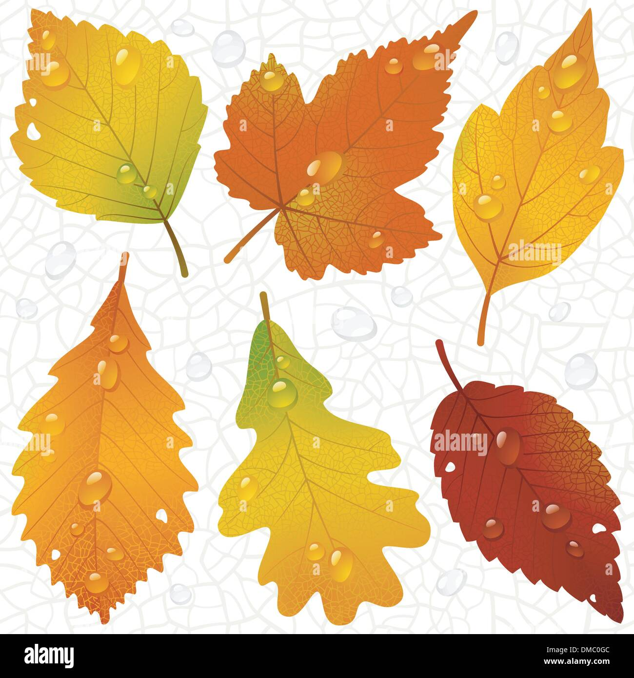 Vector autumn leaves and seamless vein background Stock Vector