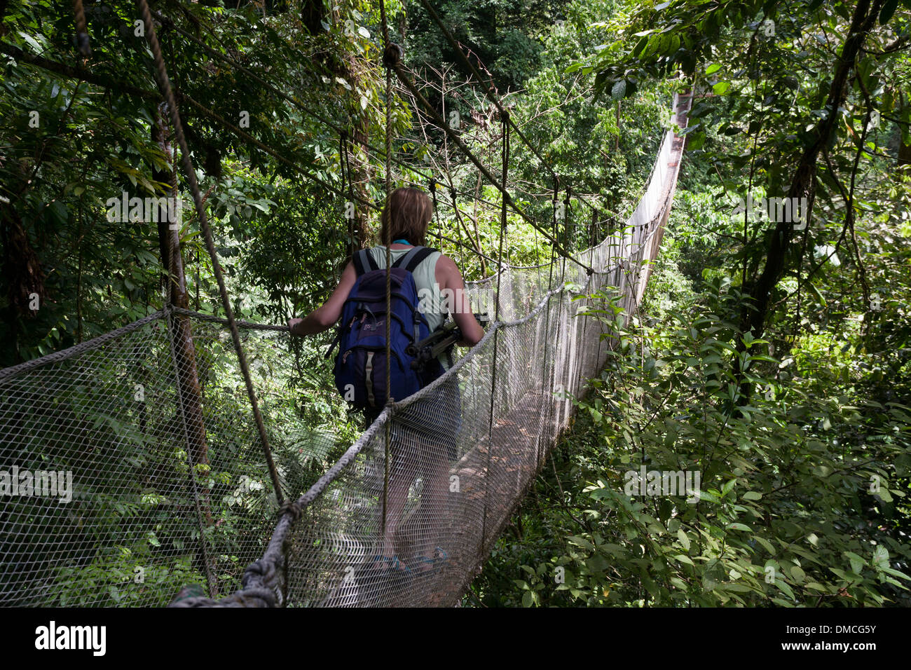 Suspended walkways in the forest canopy at the Rainmaker Conservation Project Costa Rica - Stock Image