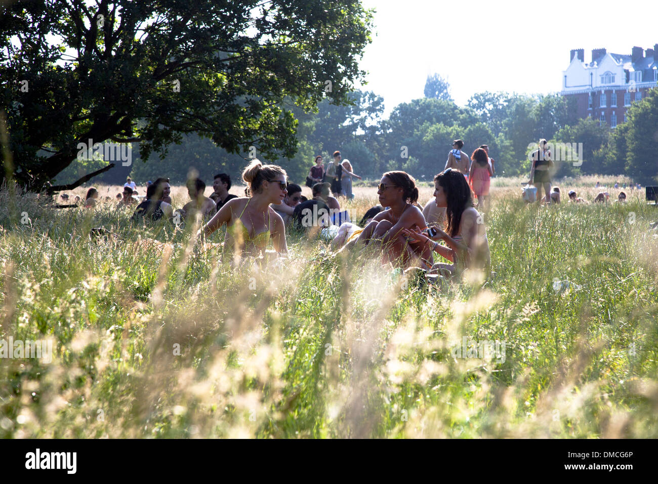 Group sitting in the grass on a sunny day, Hampstead Heath, London - Stock Image