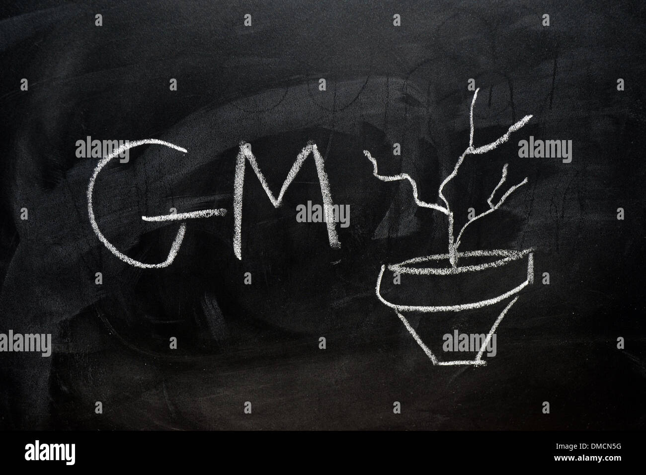 GM and a dead plant drawn on a blackboard in white chalk. - Stock Image