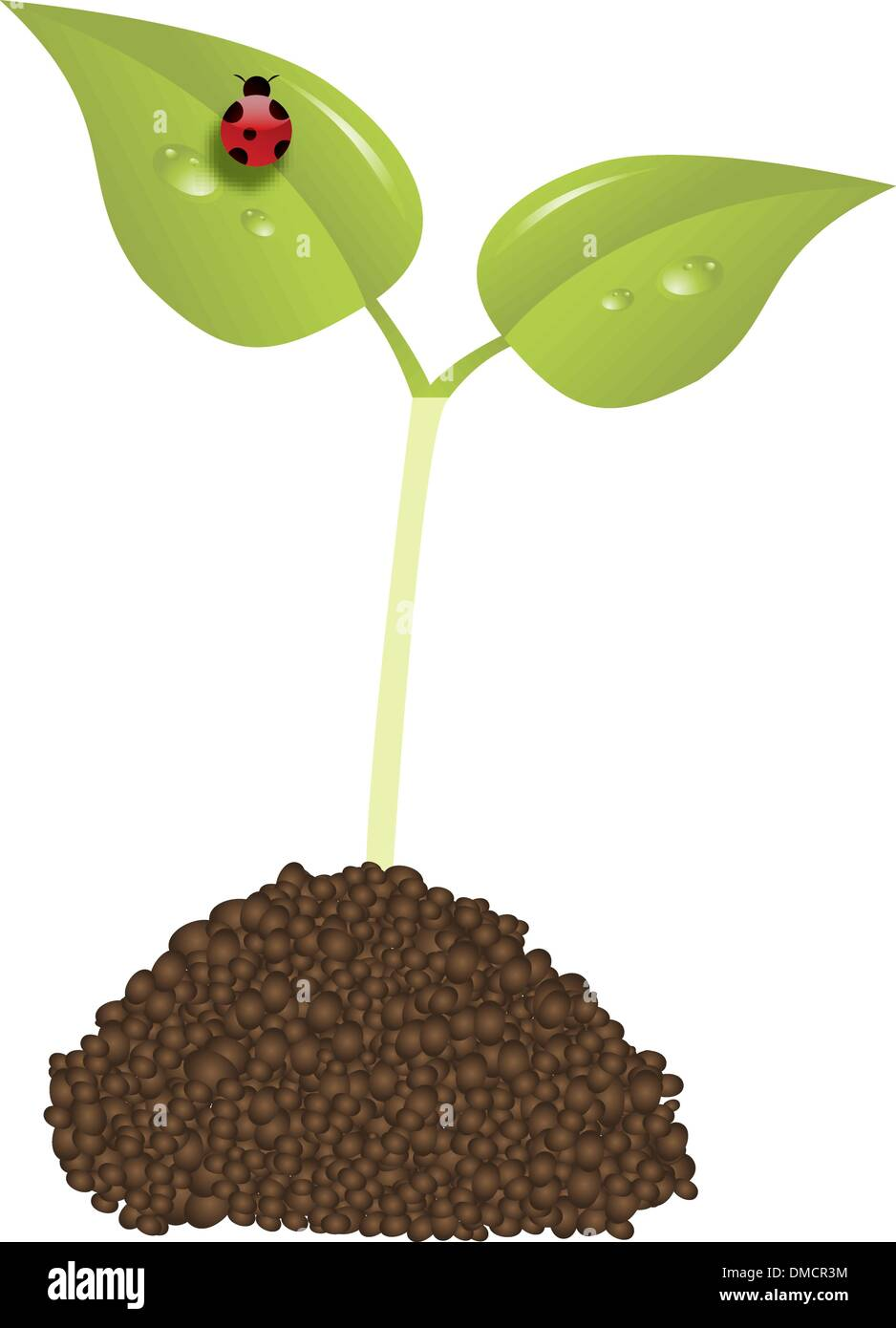 young plant - Stock Vector