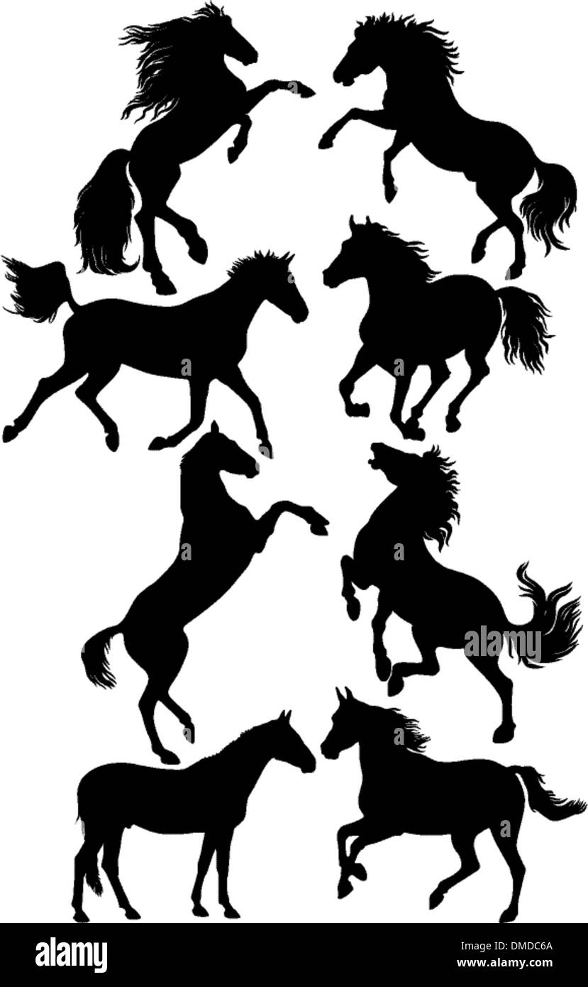 silhouettes of horses - Stock Image