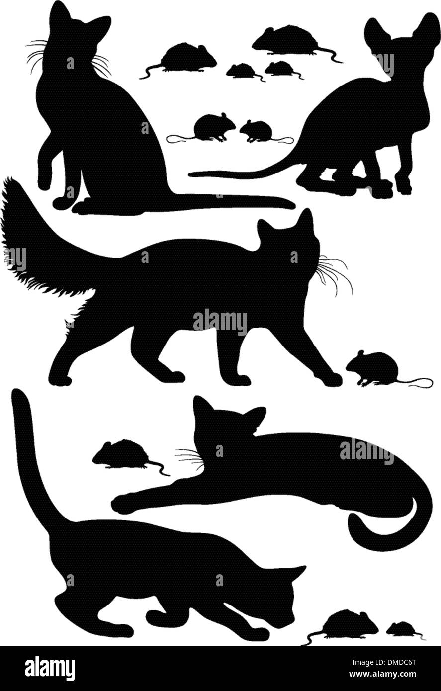 cats silhouettes - Stock Image