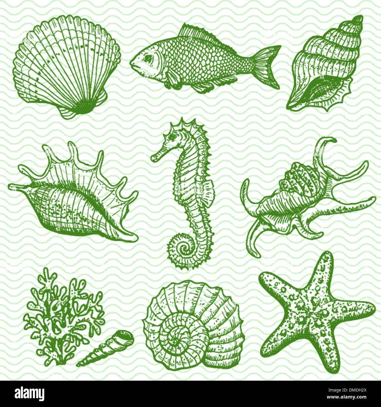 Hand Drawn Illustration Drawing Fish Stock Photos & Hand Drawn ...