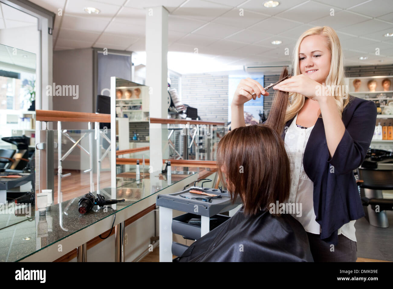 Hairdresser Cutting Client's Hair - Stock Image