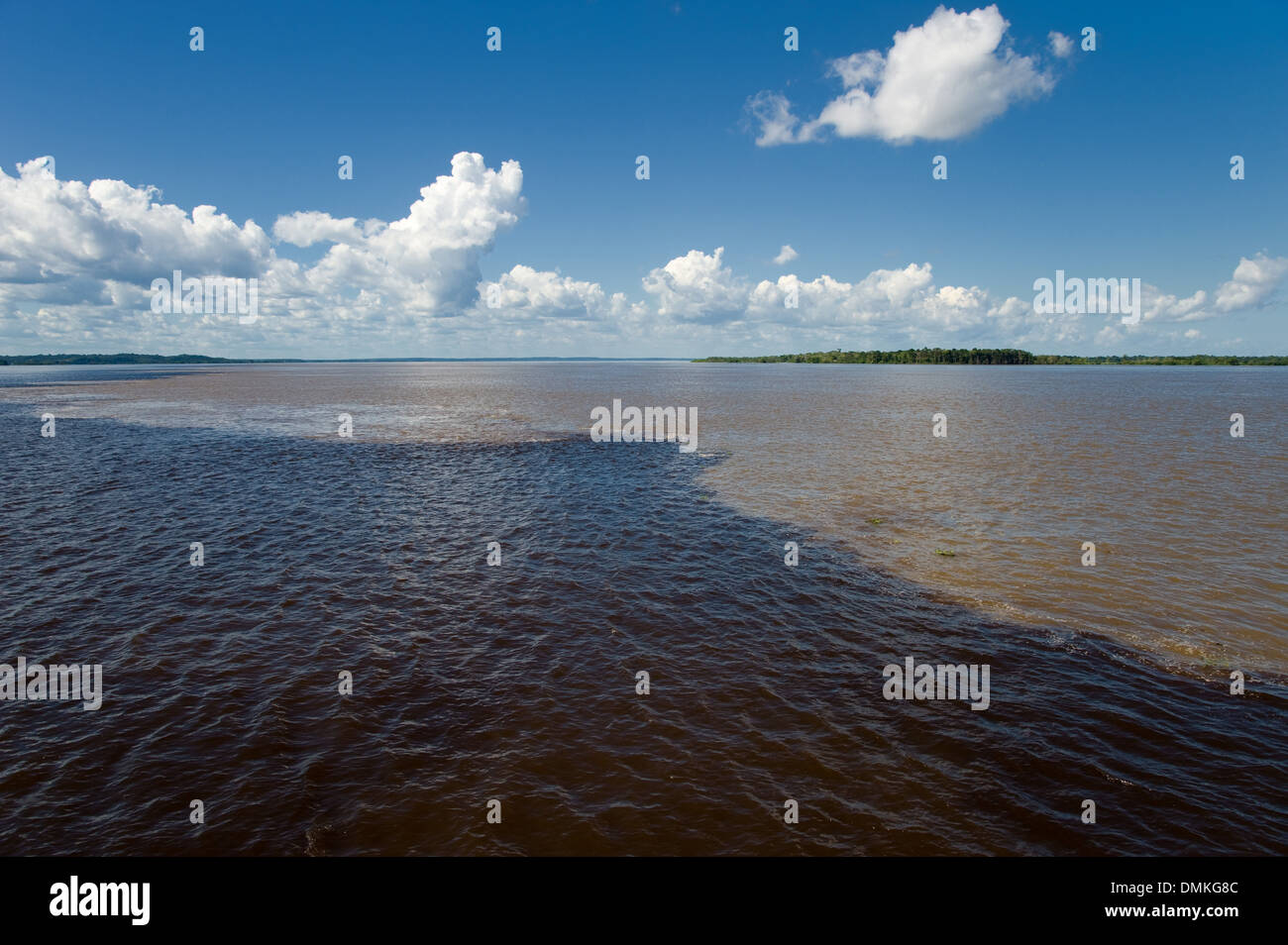 Meeting of Waters with Rio Negro and Amazon River, in the Amazon in Brazil - Stock Image
