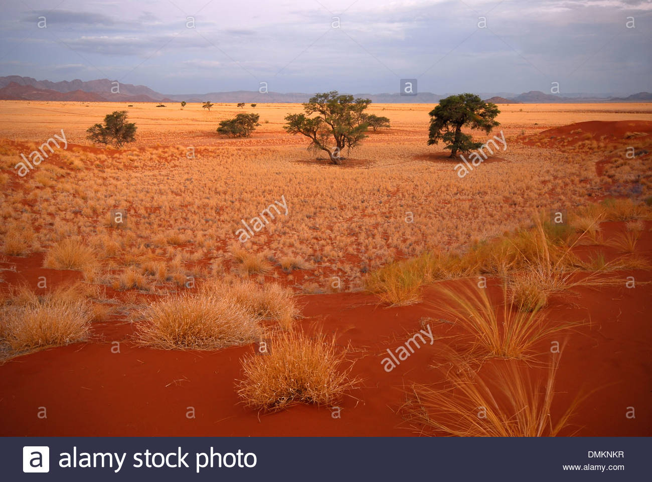 A picture of the vast landscape of Sesriem, in Namibia, Southwest Africa. Mountains, sand dunes and stunning grassland - Stock Image