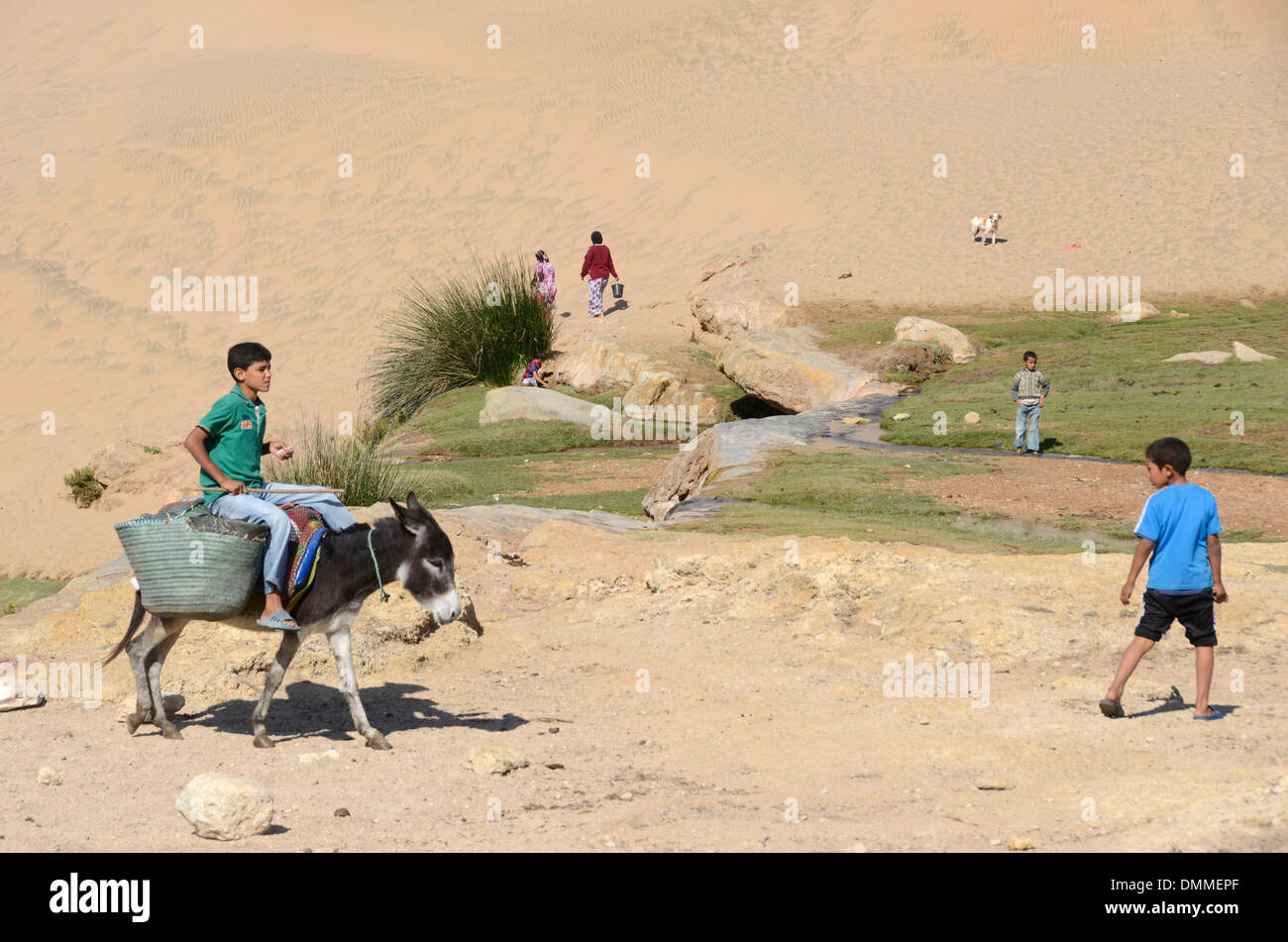Berber boy riding a donkey a small valley near a Berber village on the coast south of Essaouira Morocco Stock Photo