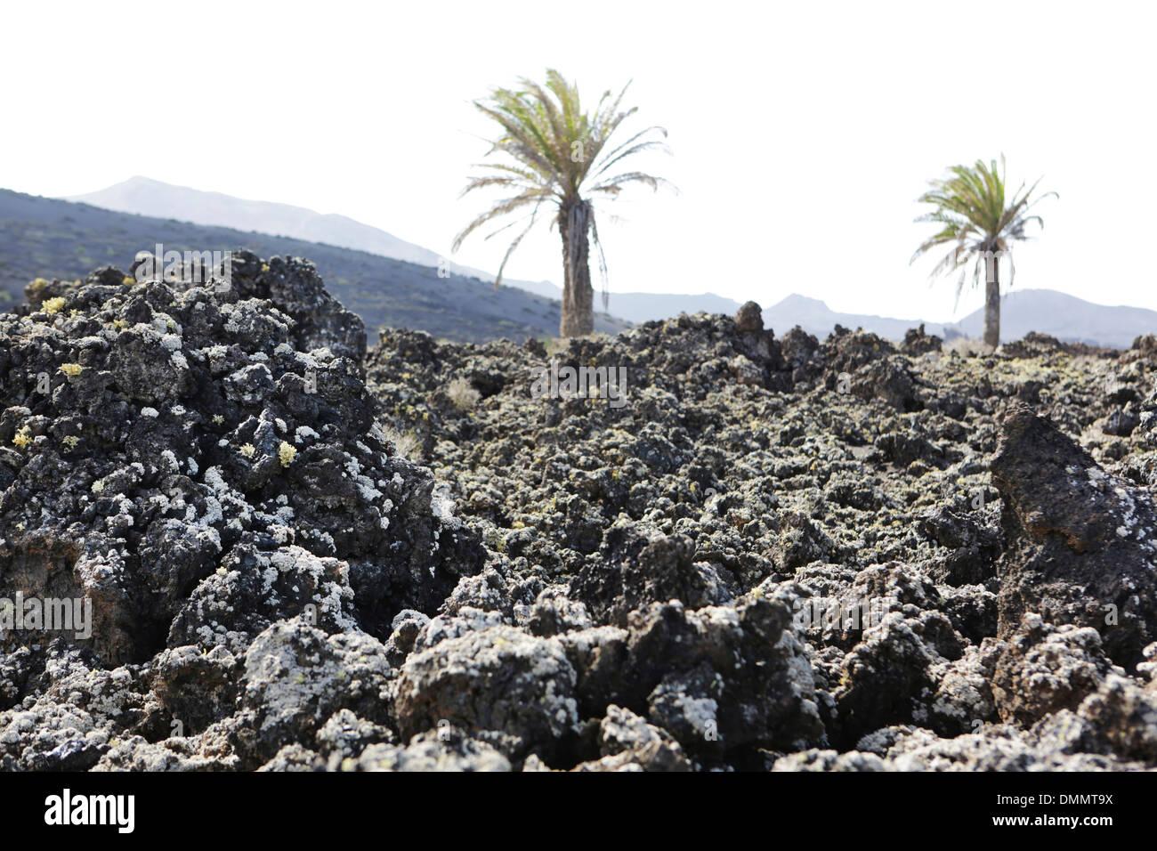 Spain, Lanzarote, Timanfaya National Park, Stock Photo