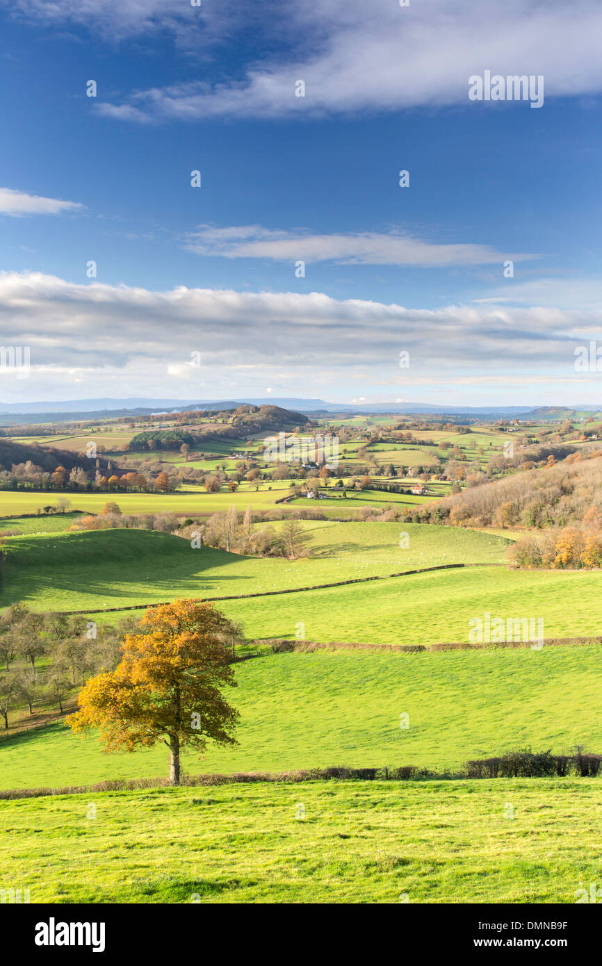 Herefordshire countryside in autumn from the Marcle Ridge near Much Marcle, Herefordshire, England, UK Stock Photo