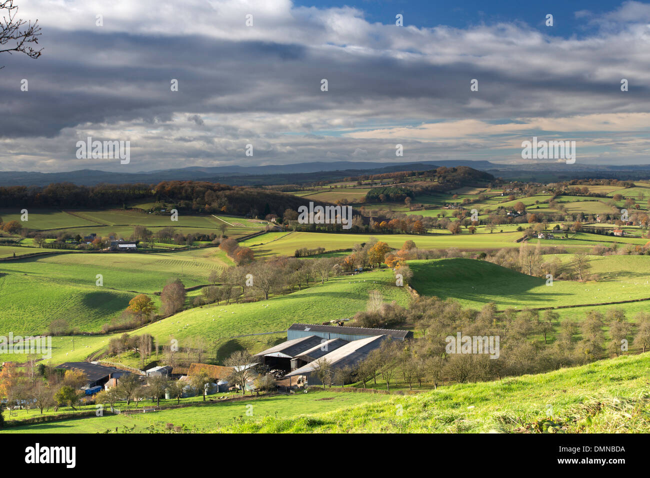 Herefordshire countryside from the Marcle Ridge and distant Black Mountains Herefordshire, England, UK Stock Photo