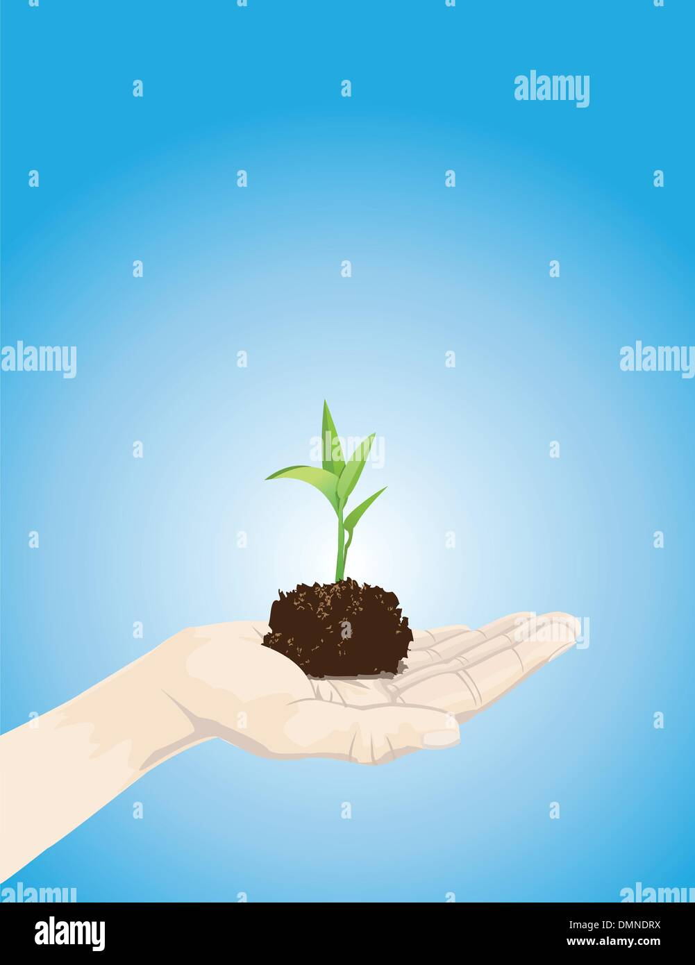 holding a plant - Stock Vector