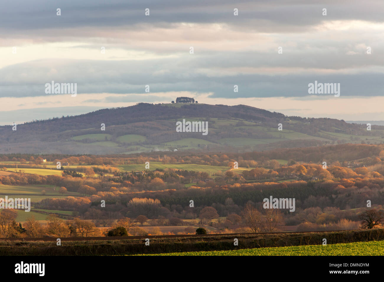 May Hill, Gloucestershire in autumn, from the Marcle Ridge, Herefordshire, England, UK Stock Photo