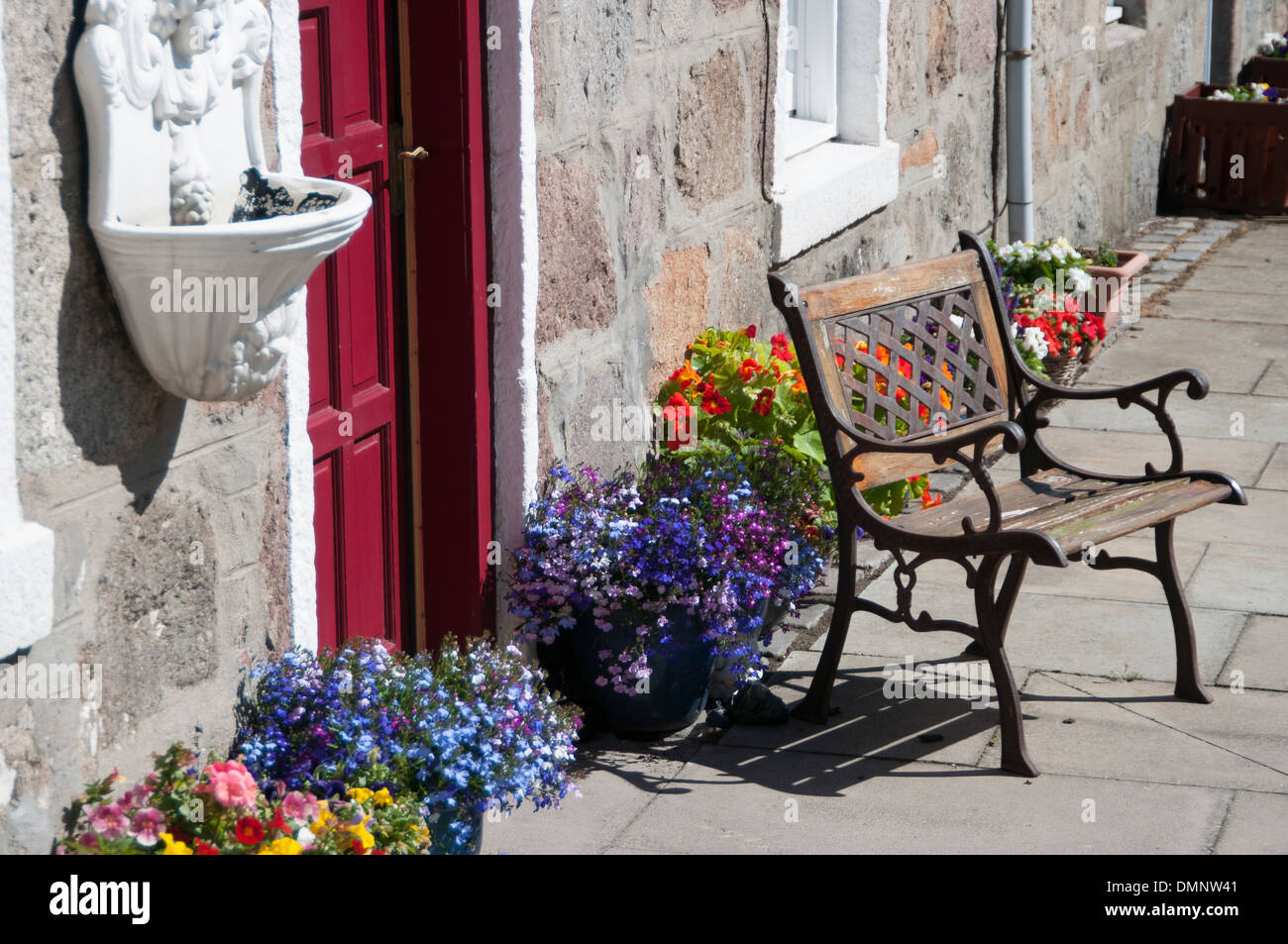 footdee garden bench potted plants footdee old  village - Stock Image