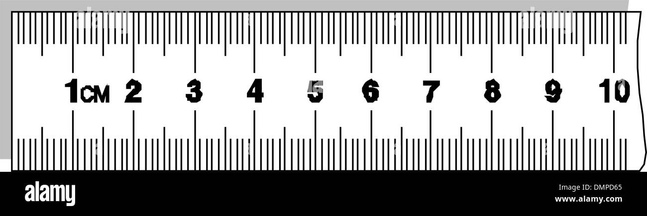 Ruler - Stock Vector