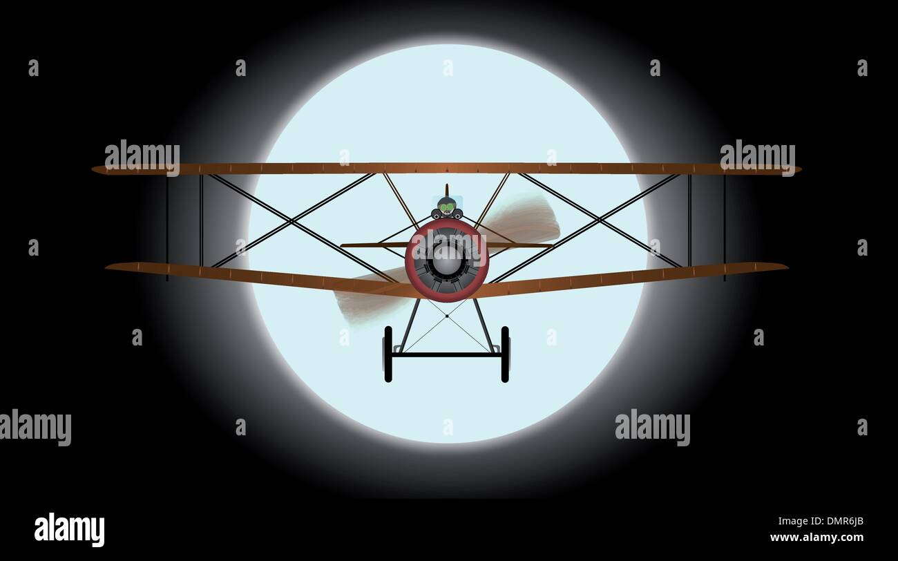 Flying by Night - Stock Image