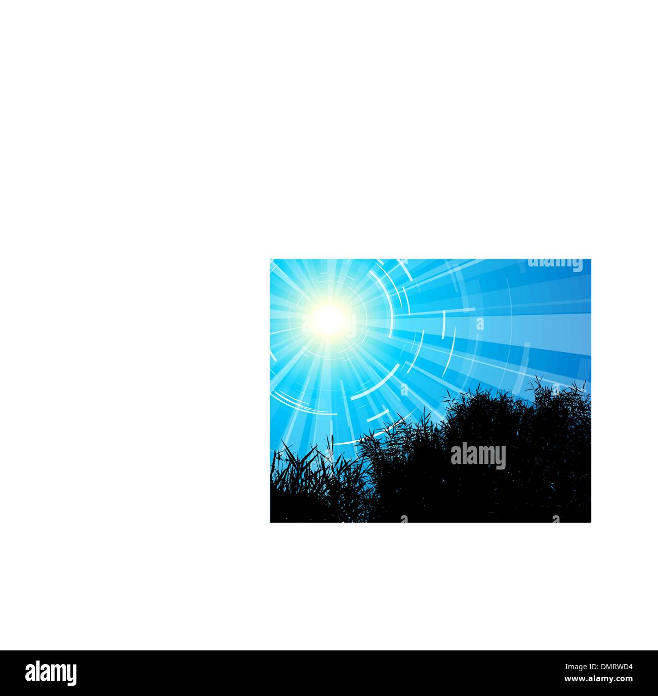 Silhouete of the reed - Stock Image