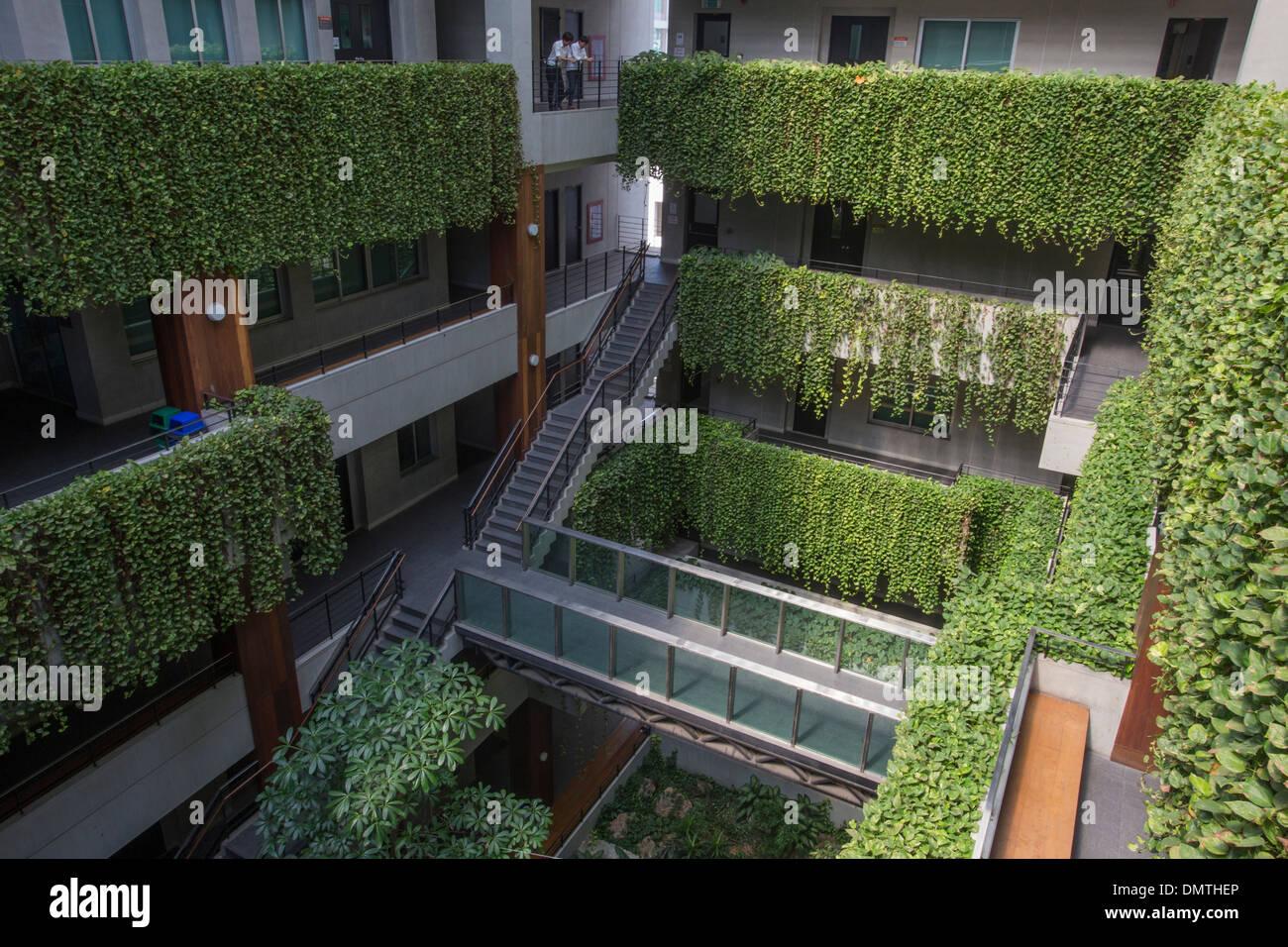 Vertical garden green wall at Kasetsart University Faculty of Economics. - Stock Image